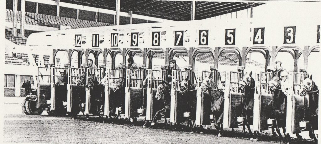 The HORSE RACING GATE WITH HORSES IN IT AT THE SPLIT SECOND WHEN ALL THE DOORS OPEN AT THE SAME TIME